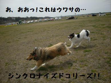 f0081100_22453170.jpg