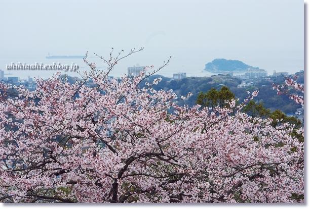 http://pds.exblog.jp/pds/1/200904/07/04/f0179404_21201711.jpg