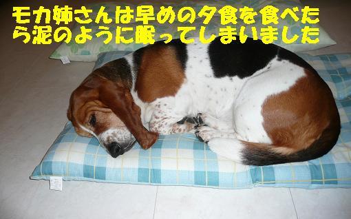 f0121712_7234957.jpg