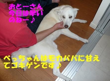 f0121712_7235992.jpg