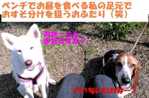 f0121712_723696.jpg