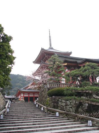 清水寺 盛り_e0048413_2185243.jpg