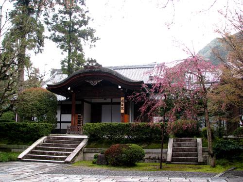 清水寺 盛り_e0048413_2192522.jpg