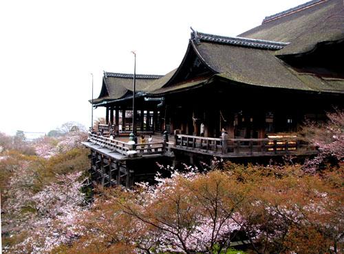 清水寺 盛り_e0048413_2193842.jpg