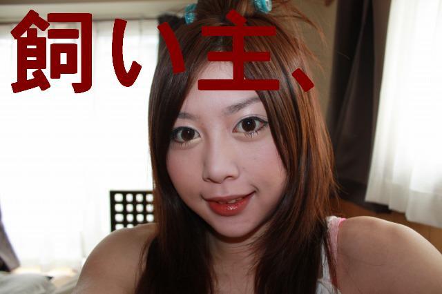 c0173042_2033512.jpg