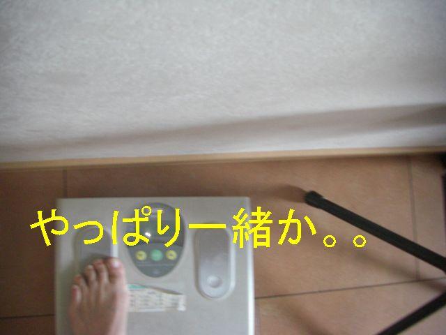 f0053952_2058631.jpg