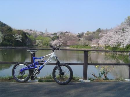 朝のサイクリング_e0165756_10144171.jpg