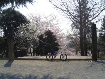 朝のサイクリング_e0165756_101511.jpg