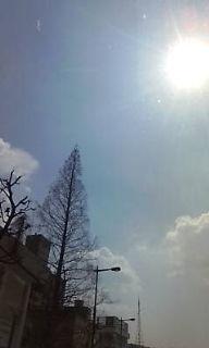春だぁ~_c0164268_1255189.jpg