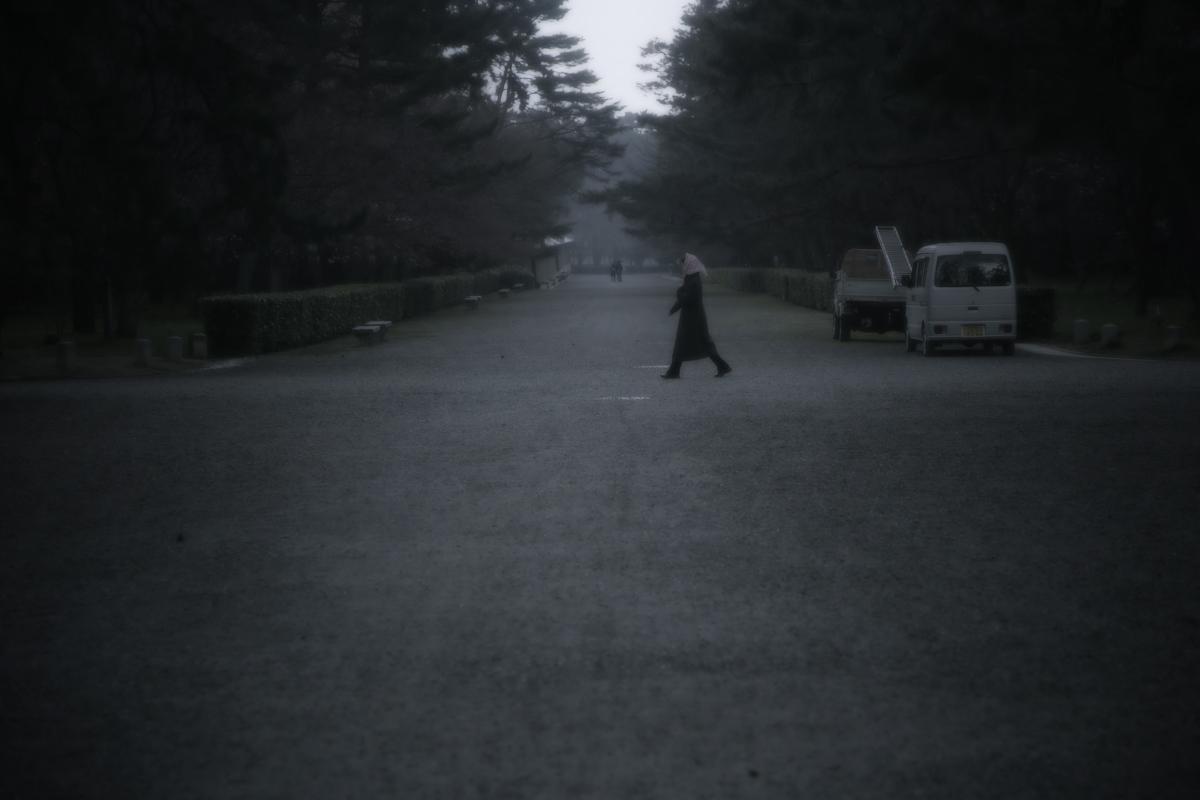 京都御苑 桜_f0021869_23321694.jpg