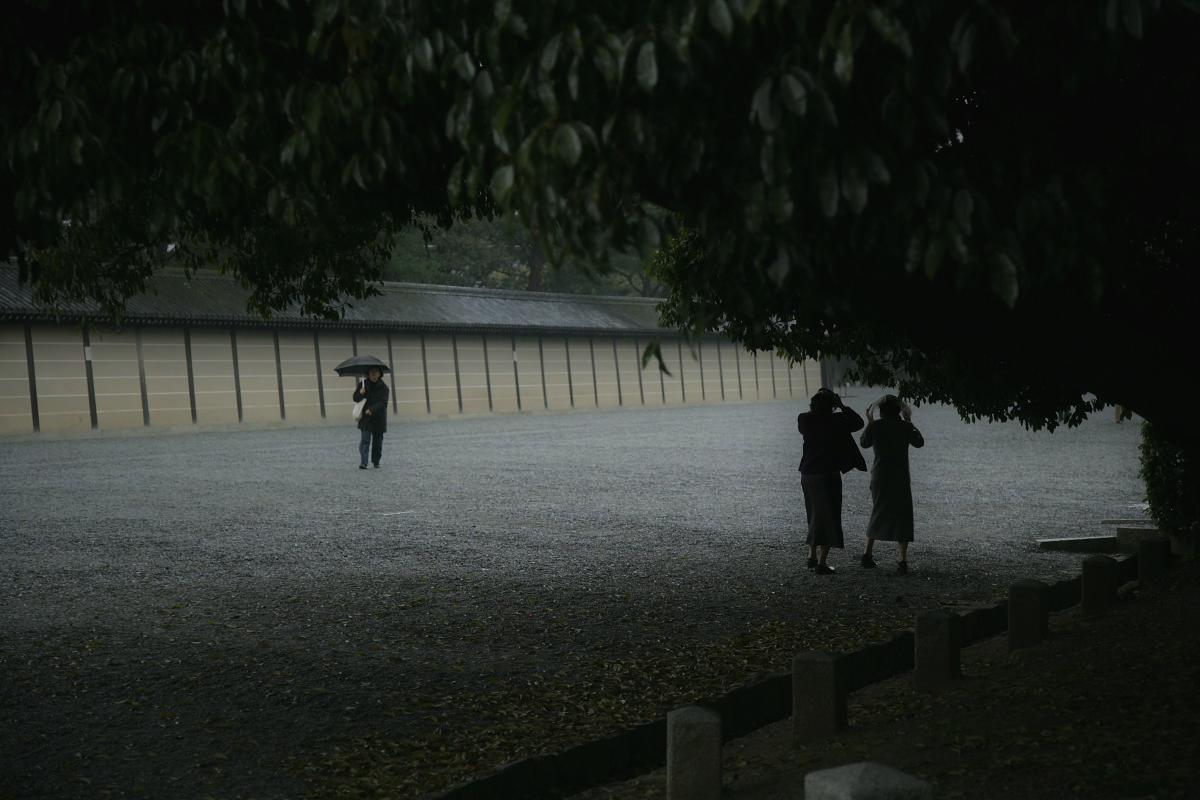 京都御苑 桜_f0021869_23323580.jpg