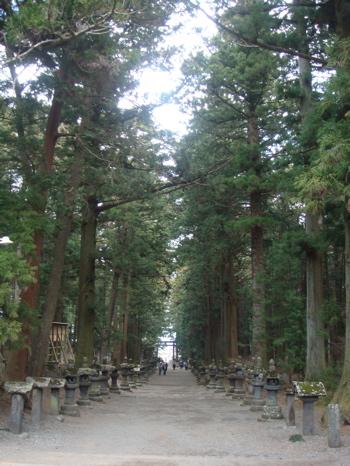 2009.4.6  富士吉田_a0083571_010179.jpg