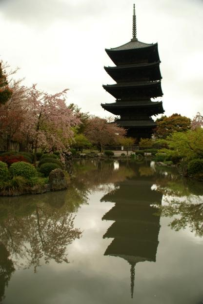 京都、桜、いろいろ_f0189086_20395914.jpg