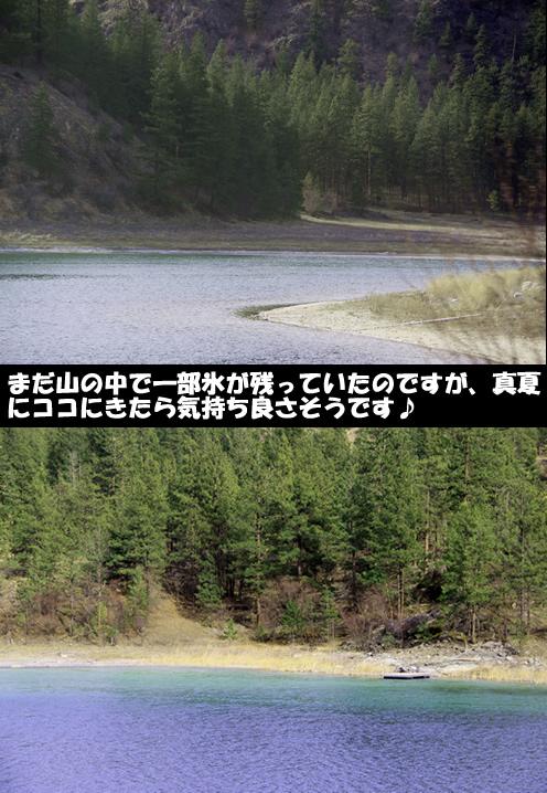 c0164491_5225479.jpg