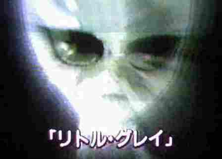 f0144493_8273050.jpg