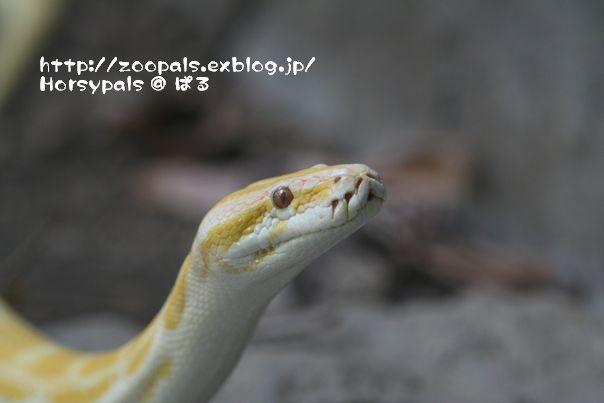 f0158697_14371328.jpg