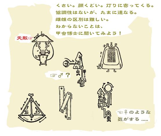 「甲虫切手型録」制作記(3)Icon_f0152544_2129190.jpg