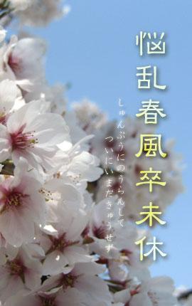 悩乱春風卒未休_c0156749_16175792.jpg
