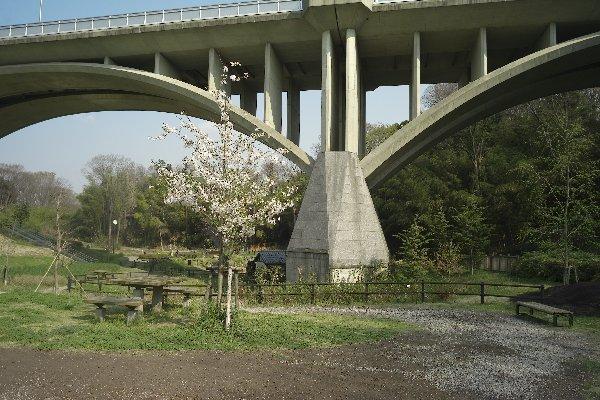 上谷戸大橋(1)_e0129750_22531466.jpg