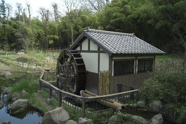 上谷戸大橋(1)_e0129750_22543194.jpg