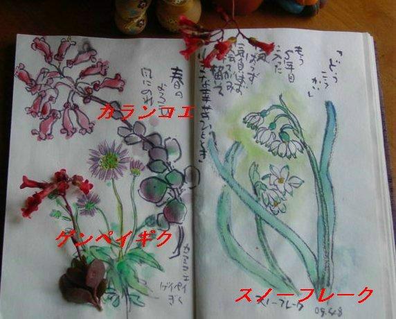 f0179357_1761565.jpg