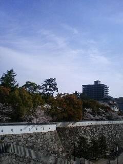 東京へ_c0170061_821077.jpg