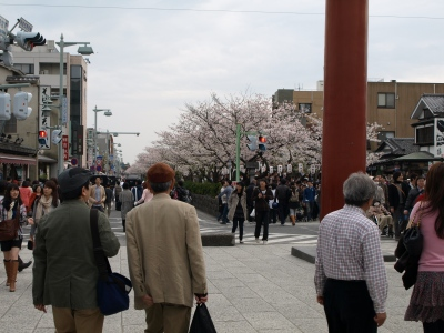 カリとエンジェル鎌倉でお花見&初詣(遅!)パート2_b0001465_15412217.jpg