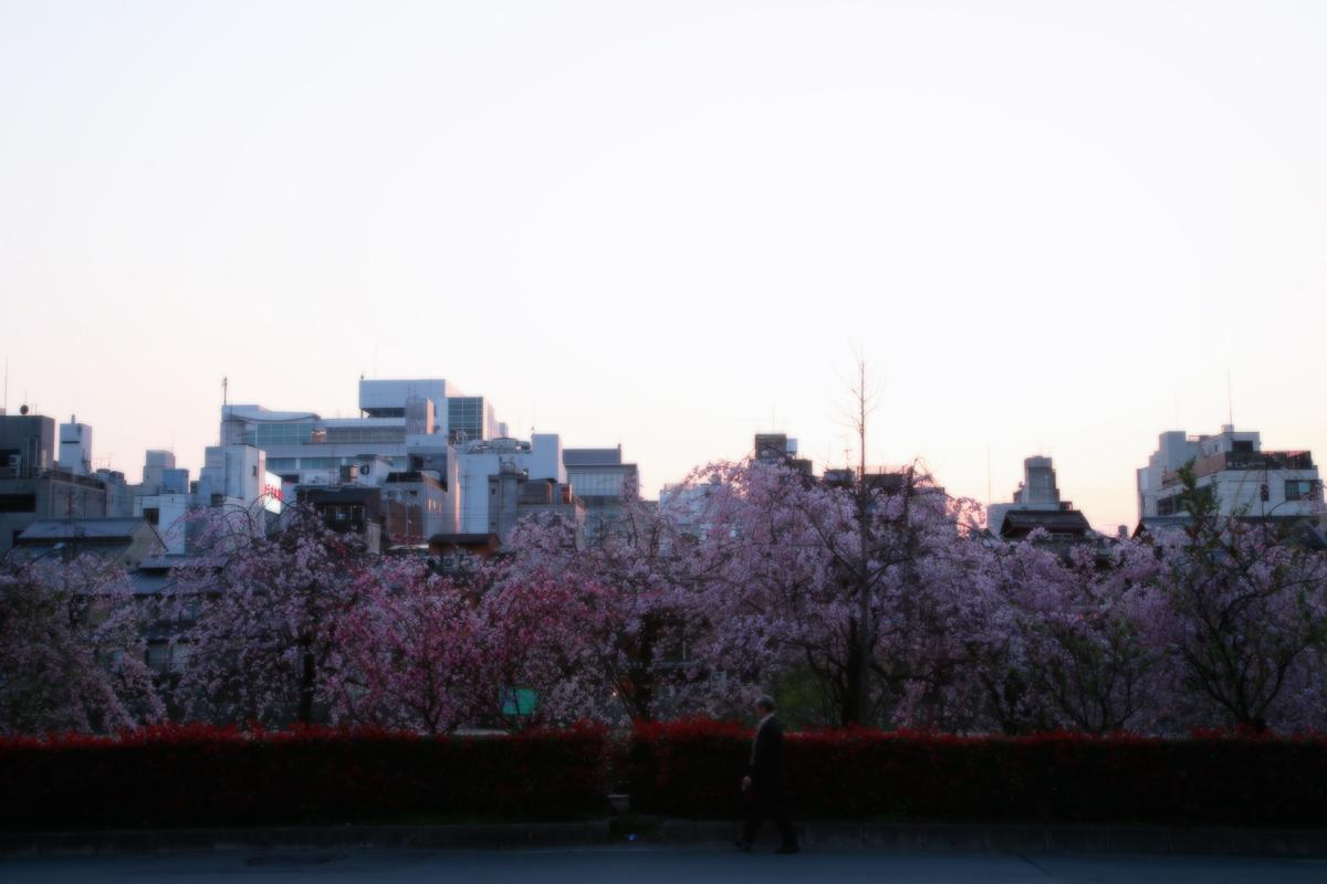 そうだ 京都、行こう。 _f0021869_2150242.jpg