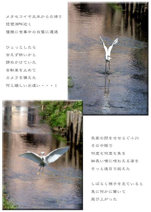 f0139890_22411417.jpg