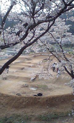 春といったら…_a0065393_2327799.jpg