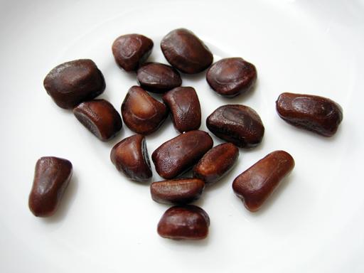 タマリンドの種子