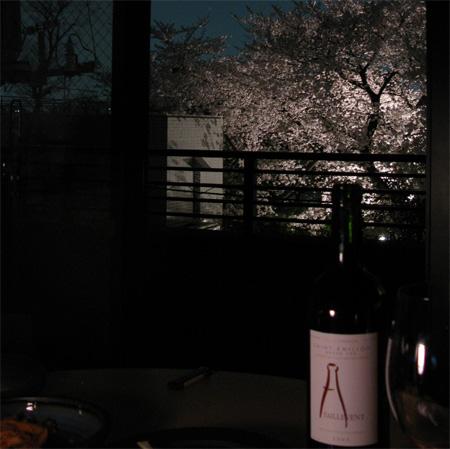 最後の花見は自宅窓から_d0045432_1315655.jpg