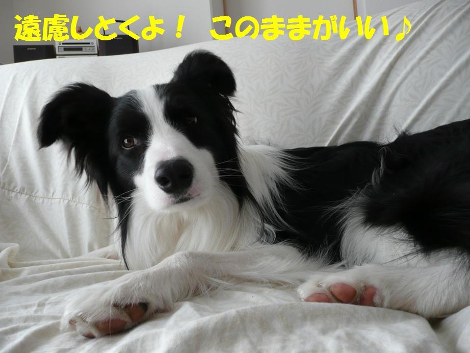 c0147241_016185.jpg