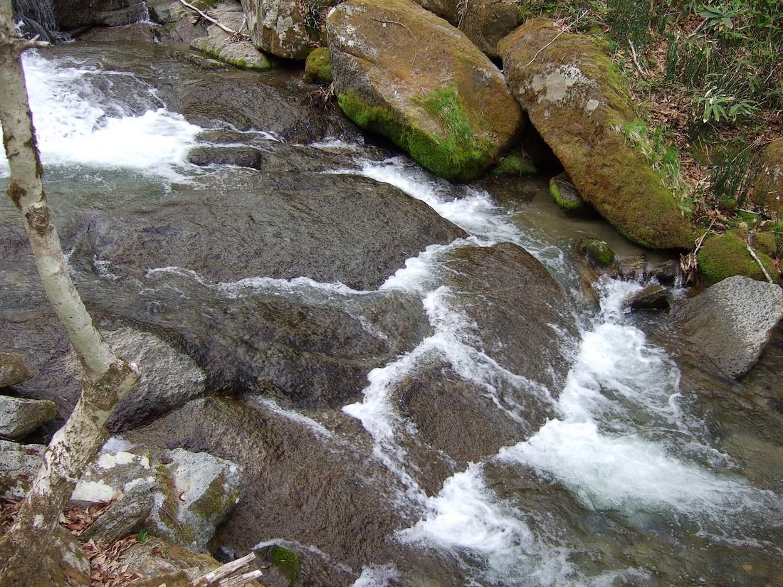 春の滝_d0001843_22121330.jpg