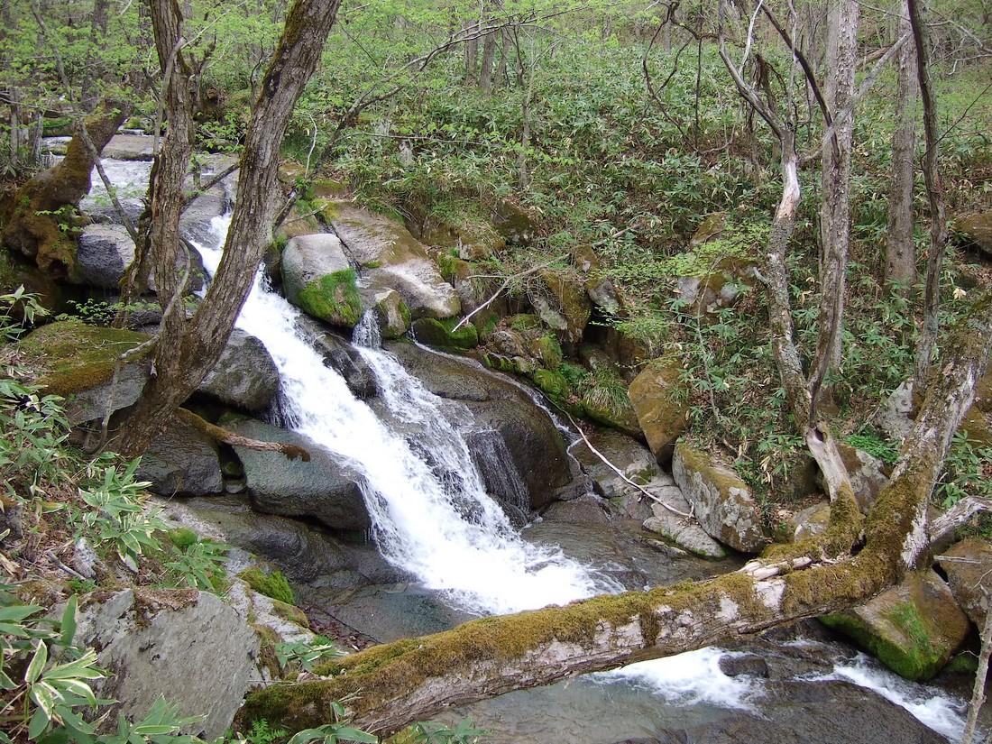 春の滝_d0001843_22244942.jpg