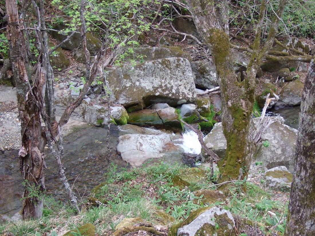 春の滝_d0001843_22365121.jpg