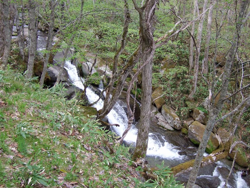春の滝_d0001843_22403047.jpg