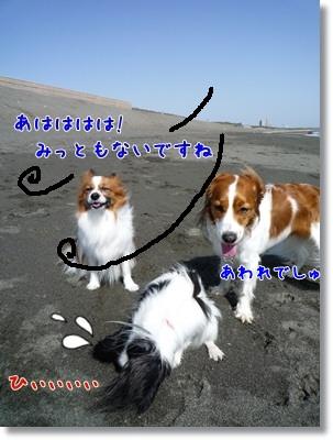 d0013149_1124773.jpg