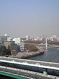 桜~満開♪_d0118053_15175659.jpg