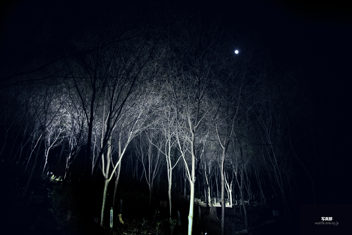 A full moon_f0021869_22132164.jpg