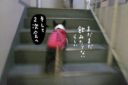 f0170072_037360.jpg