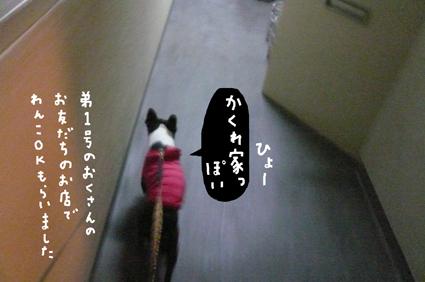 f0170072_0384029.jpg