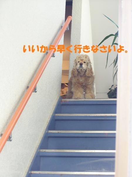 b0067012_1412920.jpg