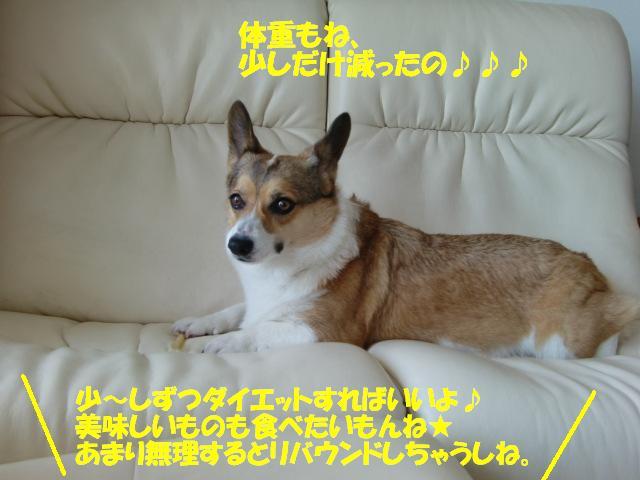 f0182121_13384165.jpg
