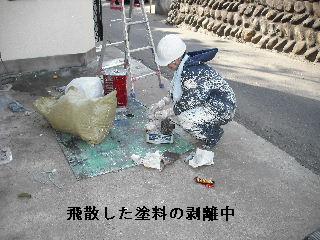 f0031037_2050274.jpg