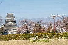 松本城-さくら満開_c0094442_15272227.jpg