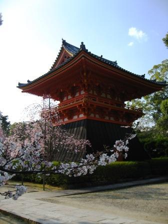 仁和寺(にんなじ)へ_e0139459_16241633.jpg