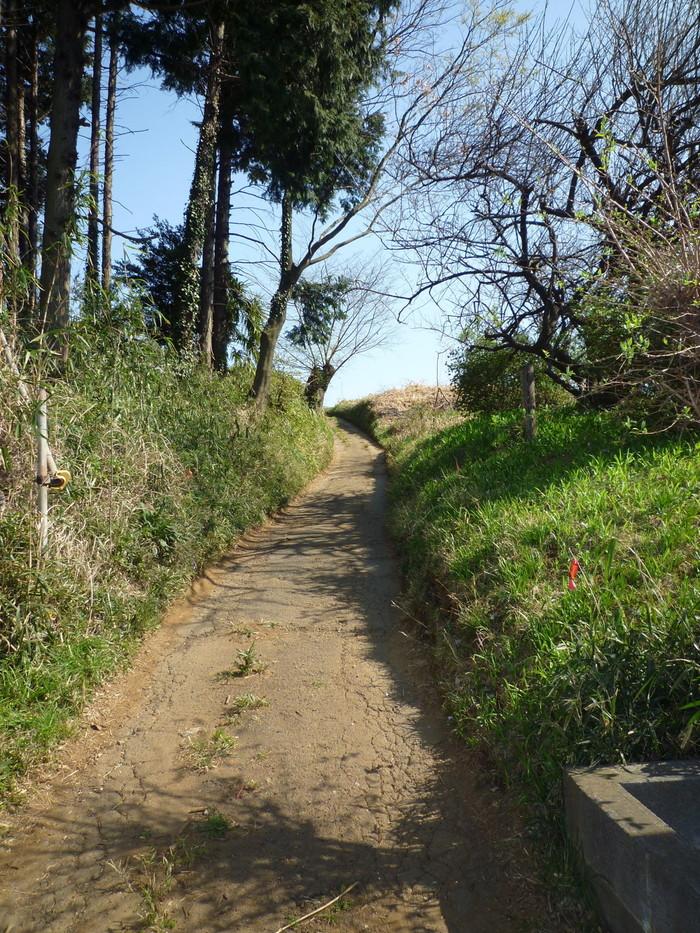 急な坂をかけ登ったら…_b0093660_562365.jpg