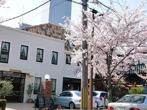 春の美味しい遠足_f0134268_13152084.jpg