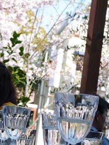 春の美味しい遠足_f0134268_1317352.jpg